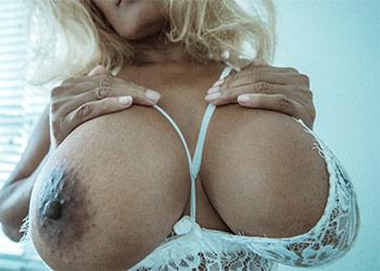 Mango Maddy white lace