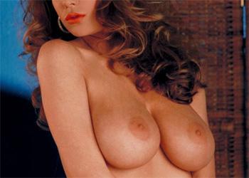 Paula Price Classic Desire