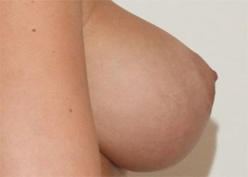 Regina Manfre busty